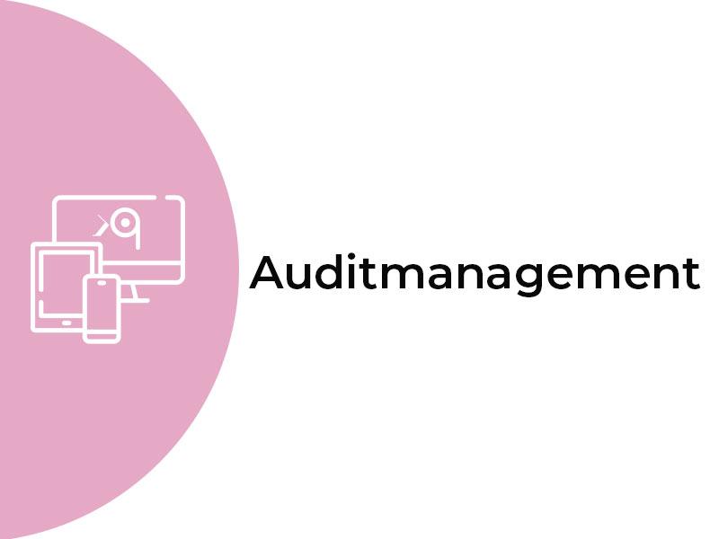 audit-management